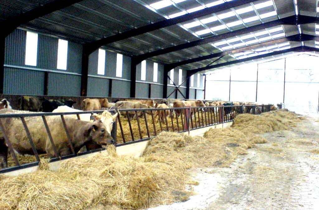 Ingeniería agrícola: Proyecto de nave ganadera
