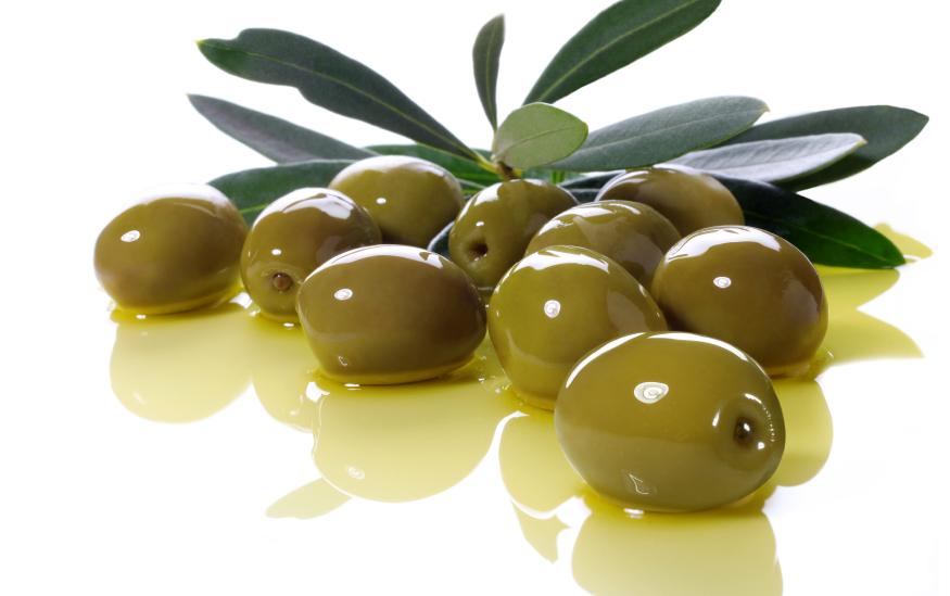 Cultivo de olivo en Canarias