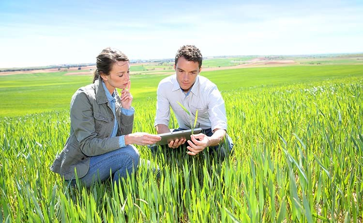 La función del perito agrónomo judicial en el mundo rural