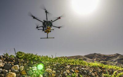 Drones en la agricultura, el aporte de la tecnología