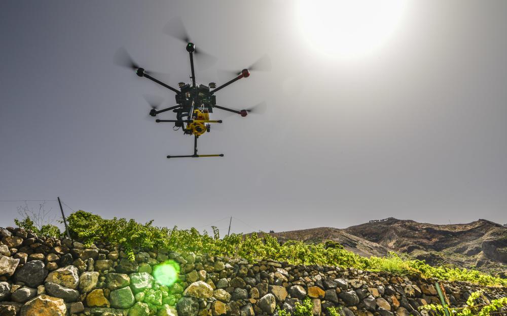 drones viñedos tejeda