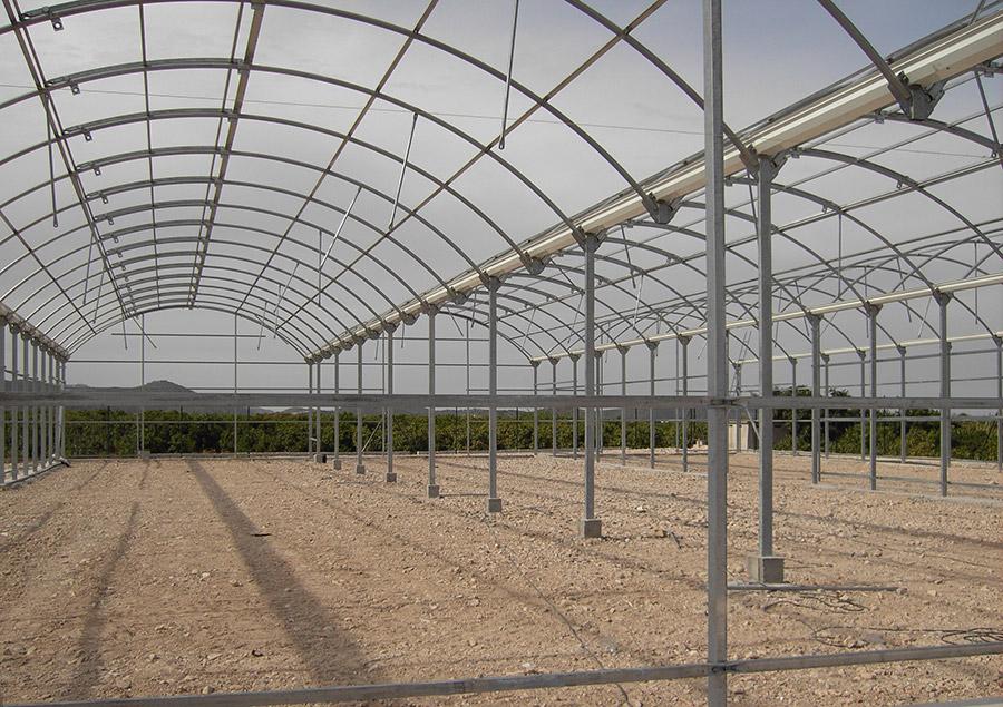 La Ingeniería de invernadero: tecnología a favor de la producción agrícola