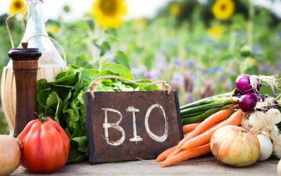 10 mitos y verdades sobre la agricultura ecológica