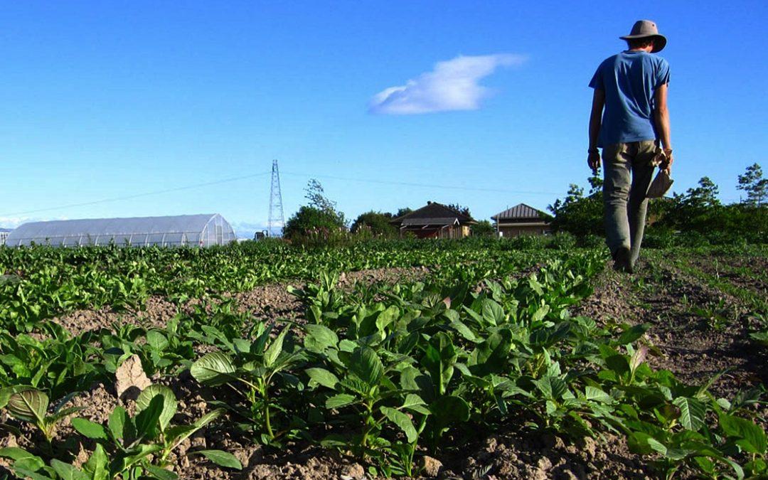 Claves para mejorar la vida de los productores del campo