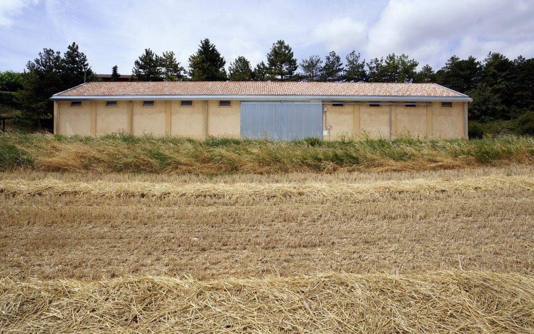 Agroingeniería: proyectos de rehabilitación de infraestructuras