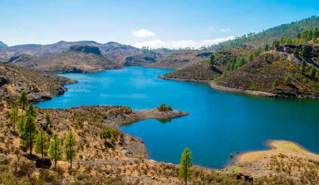 Importancia de la optimización en el uso del agua en la agricultura de las Islas Canarias
