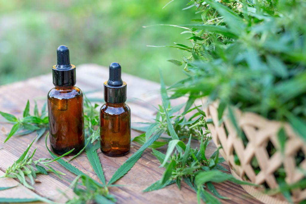 propiedades medicinales cáñamo industrial