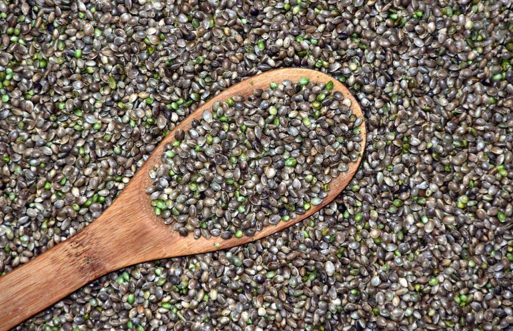 semillas cáñamo industrial certificadas Unión Europea
