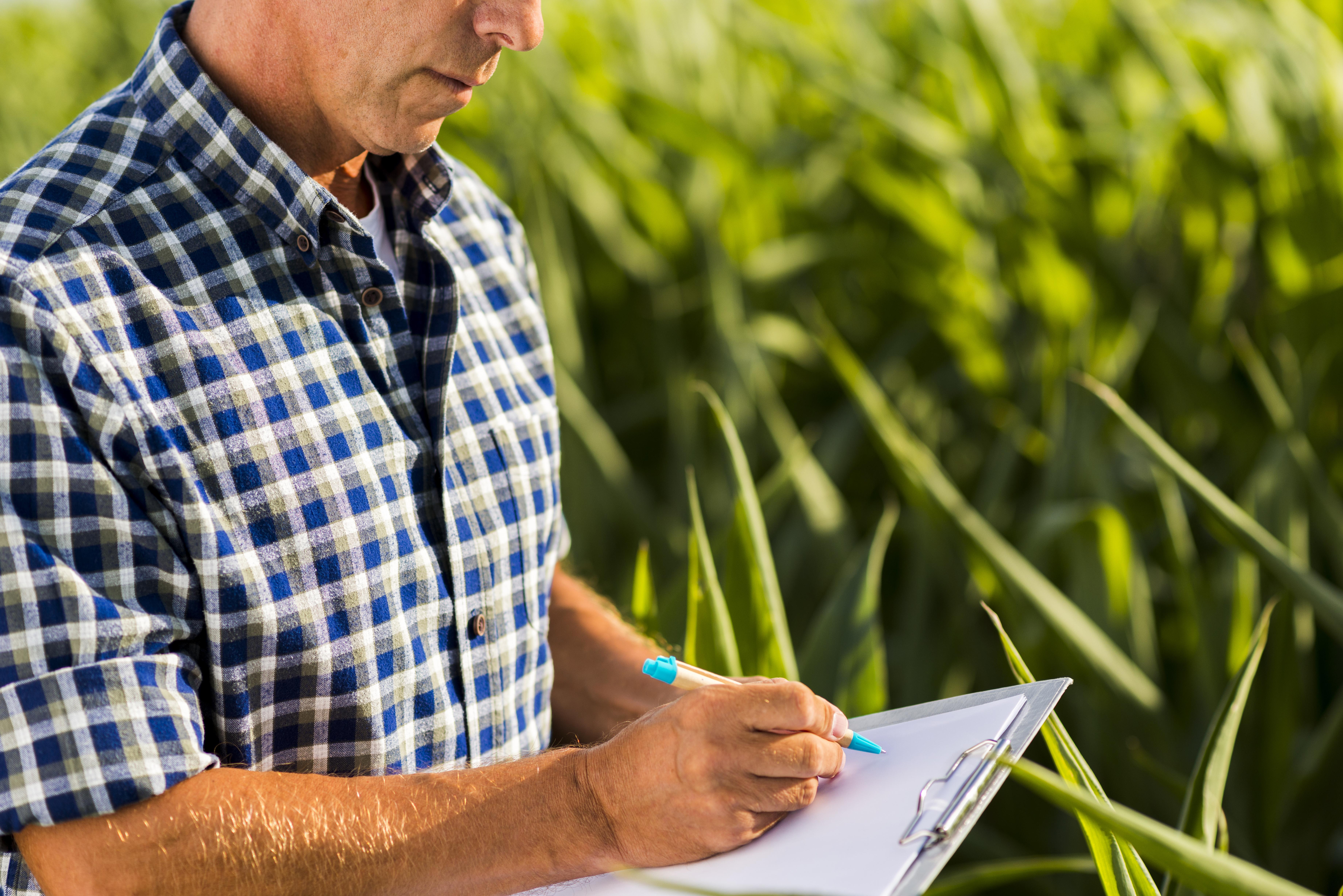 ayudas agrícolas Canarias 2020