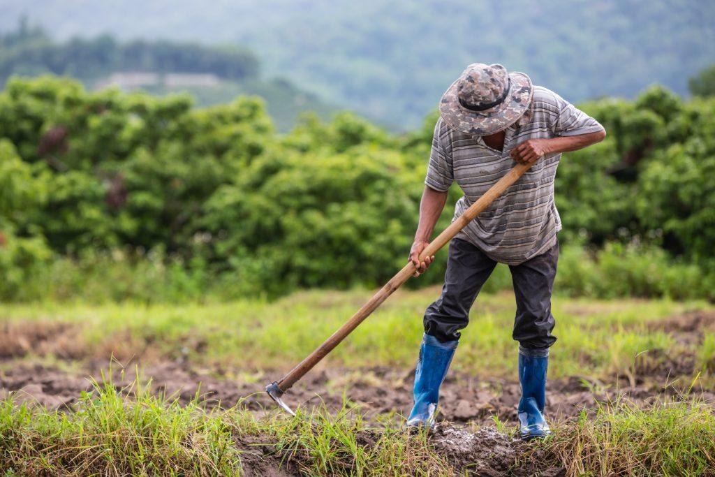 sector agrario no para