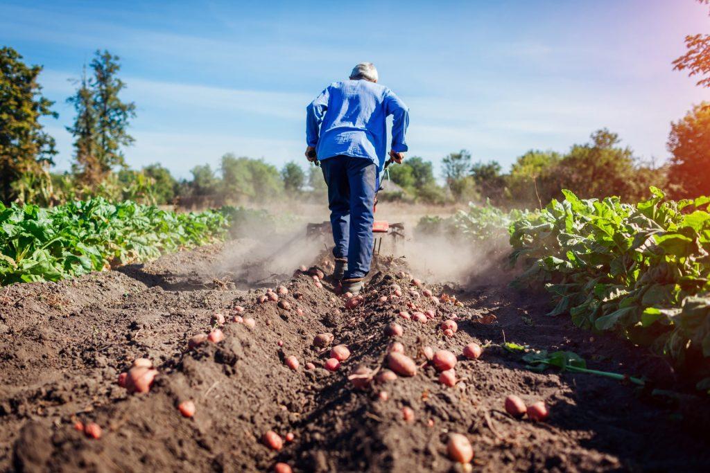cómo es ser ingeniero agrónomo