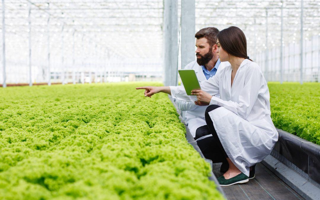 rol del ingeniero agrónomo