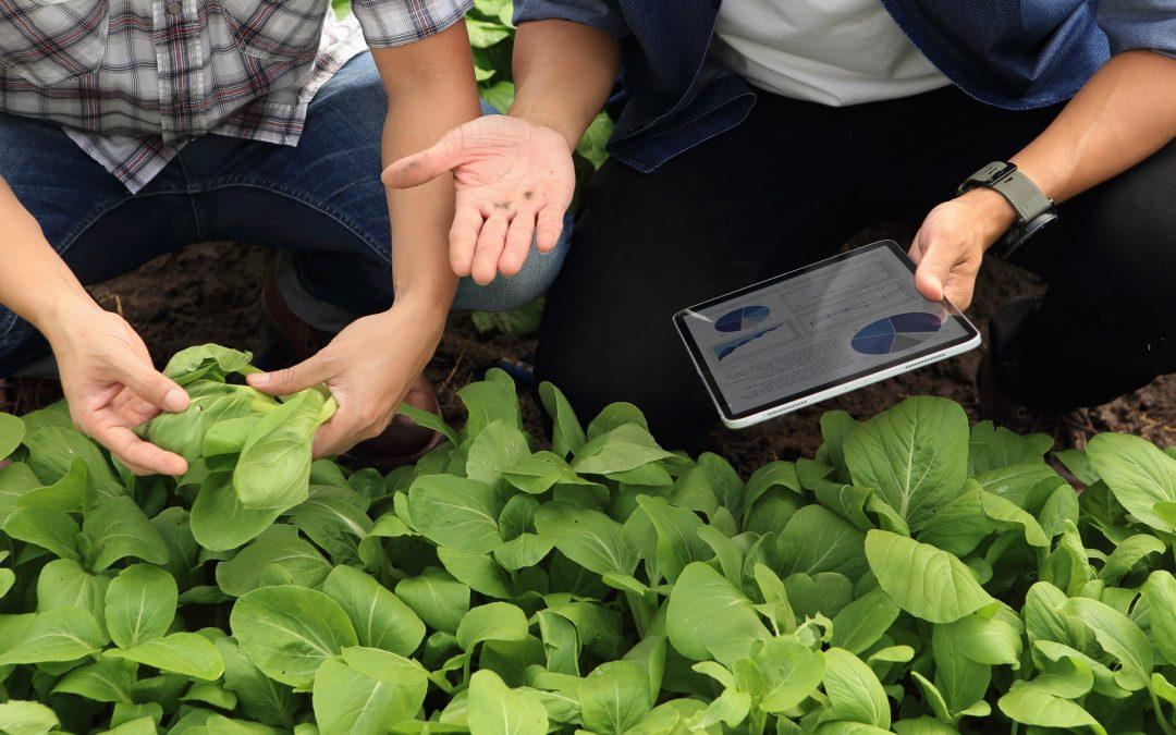 ¡Rompe con los mitos de la agricultura de precisión!