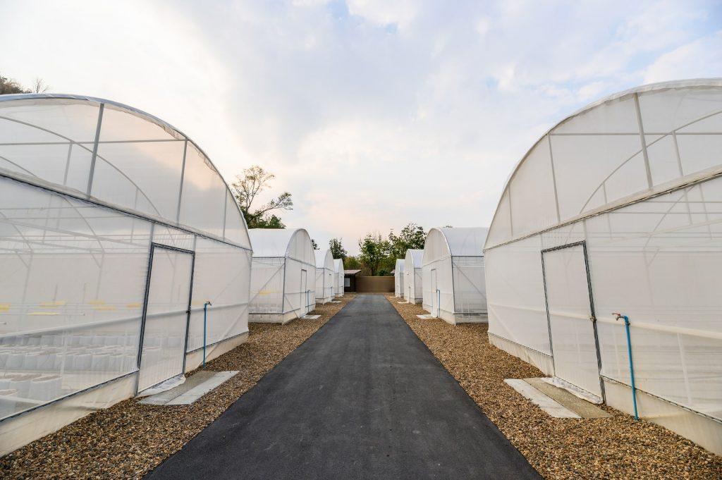 caracteristicas invernadero tunel