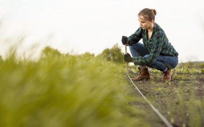 ¿Cuáles son los usos del riego en agricultura?