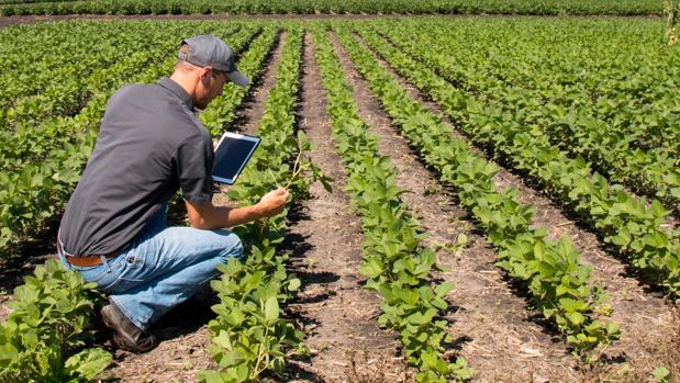 convertirse empresario agricola