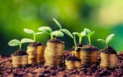 Emprendedor agrícola – El negocio de la agricultura