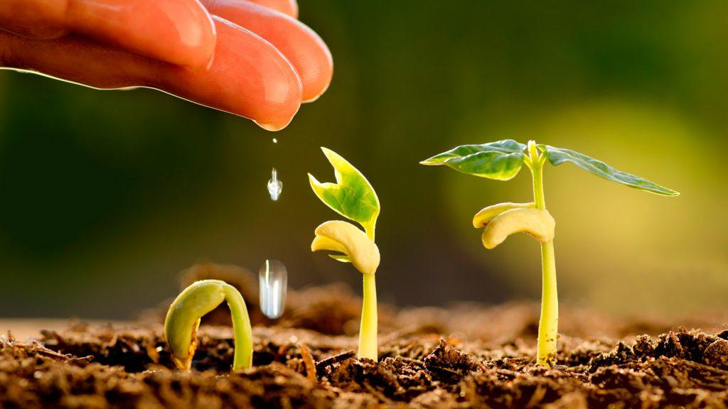 ventajas agronegocios