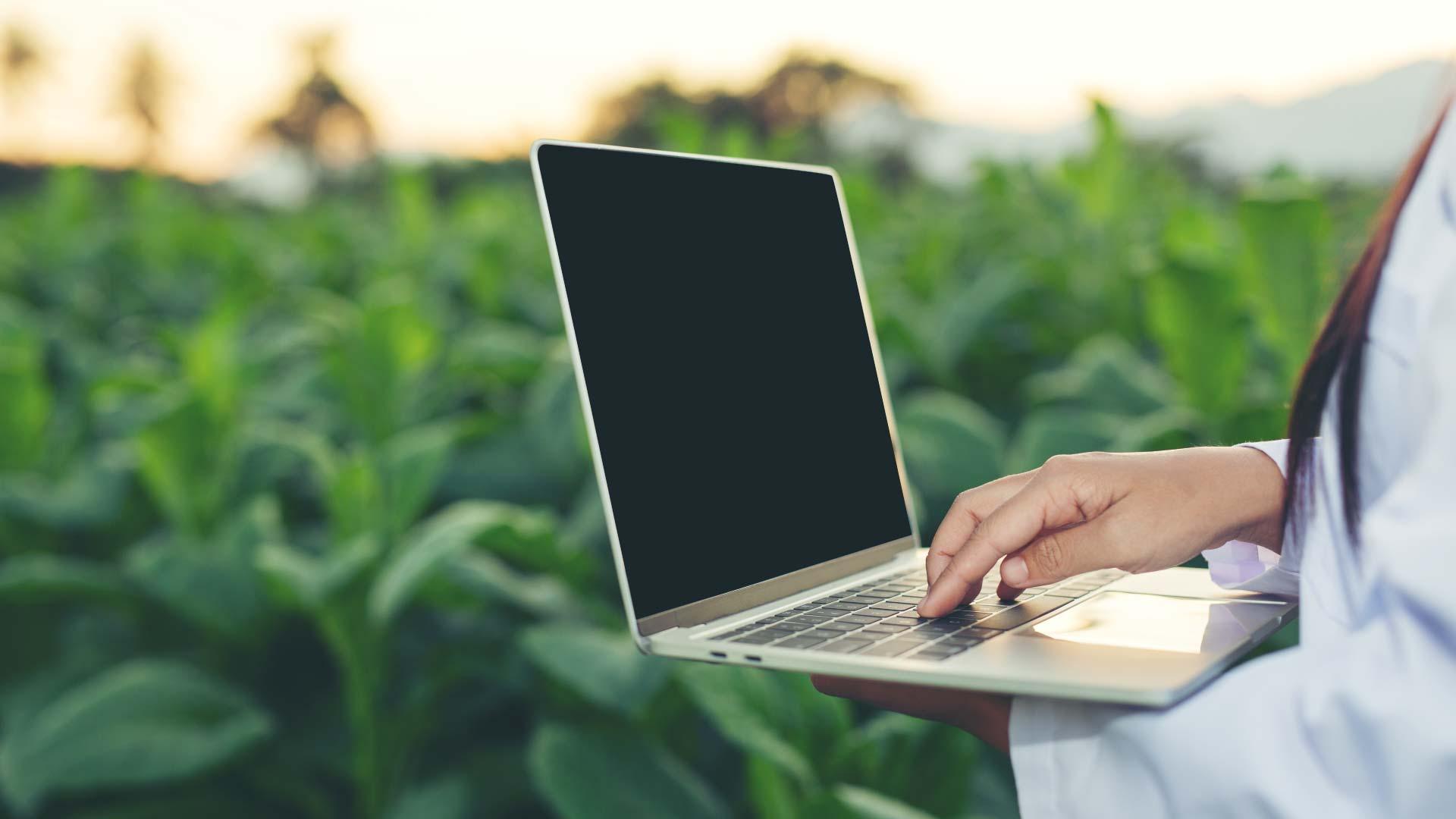 ingeniero agrícola